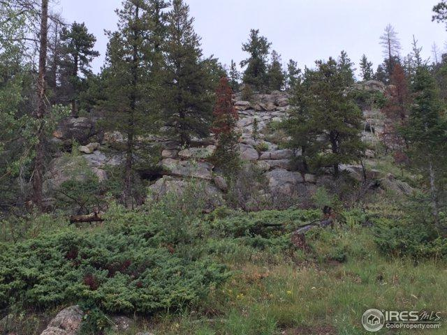 726 Micmac Dr, Red Feather Lakes, CO 80545 (MLS #828978) :: 8z Real Estate