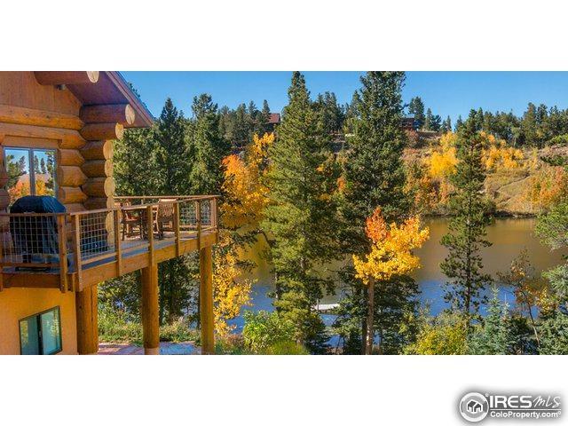 734 Pine Cone Cir, Ward, CO 80481 (MLS #828980) :: 8z Real Estate