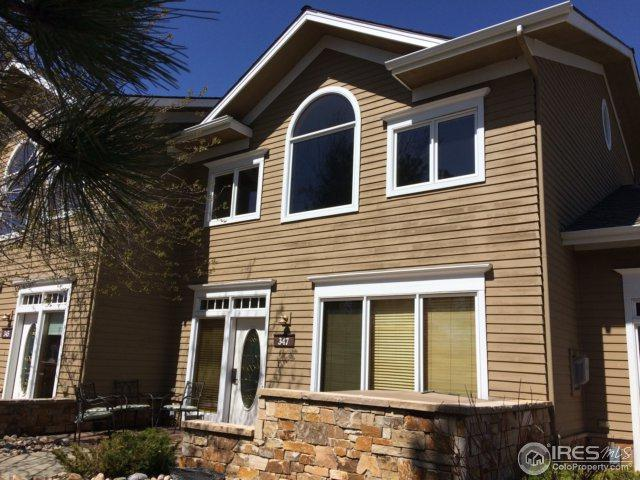 347 Overlook Ln, Estes Park, CO 80517 (MLS #828997) :: 8z Real Estate