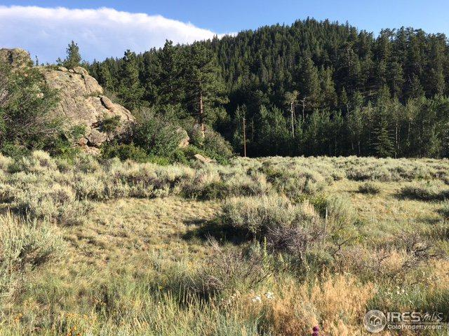 1093 Beartrap Rd, Red Feather Lakes, CO 80545 (MLS #829103) :: 8z Real Estate
