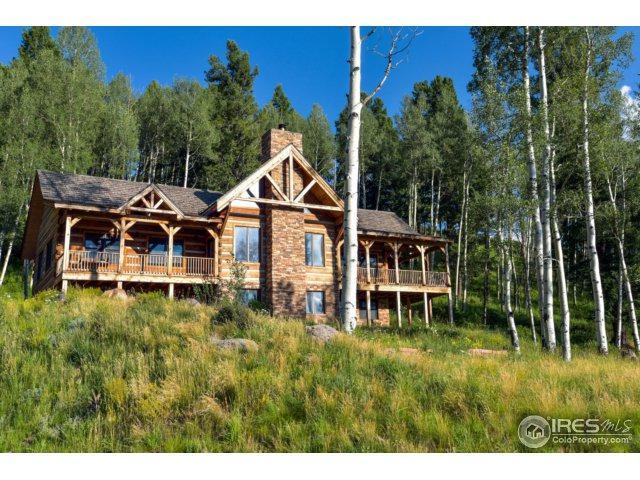104 Aldasoro Rd, Telluride, CO 81435 (MLS #829227) :: 8z Real Estate