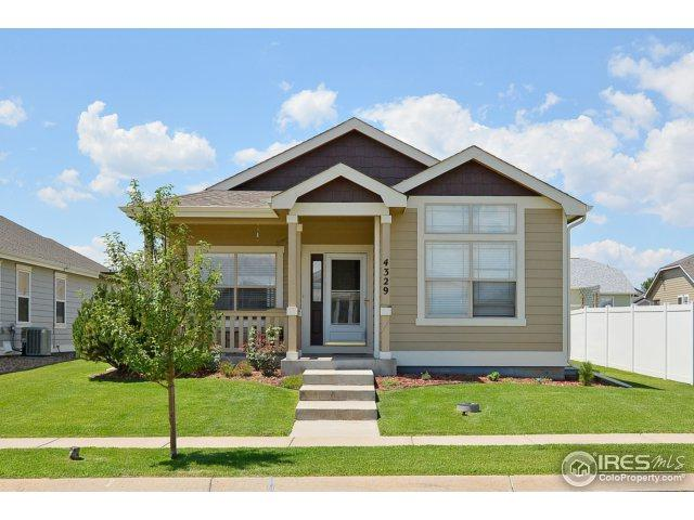 4329 Paintbrush Dr, Evans, CO 80620 (MLS #829326) :: 8z Real Estate