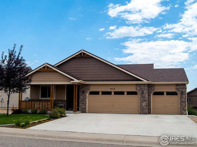 4510 Stump Ave, Loveland, CO 80538 (MLS #829353) :: 8z Real Estate