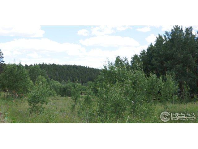 2804 Upper Apex Rd, Black Hawk, CO 80422 (MLS #829388) :: 8z Real Estate