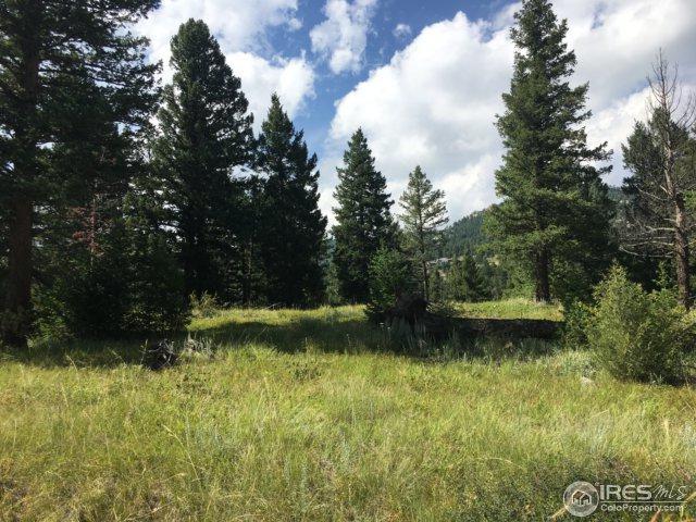 38 Lakeshore Park Rd, Boulder, CO 80302 (#829435) :: The Peak Properties Group
