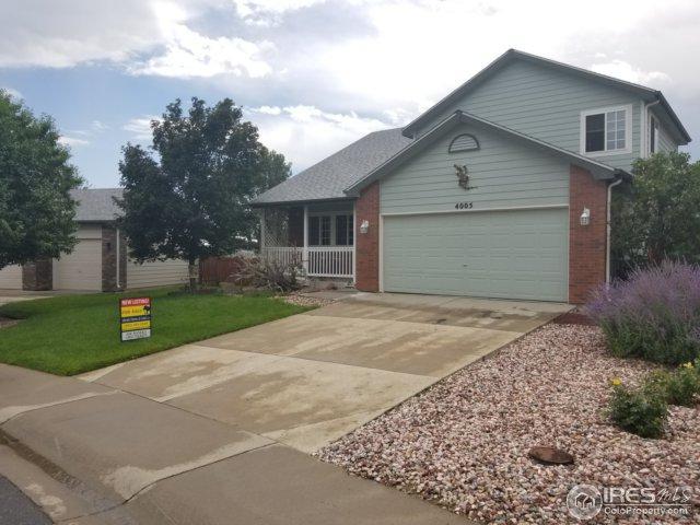 4005 Florence Dr, Loveland, CO 80538 (MLS #829498) :: 8z Real Estate
