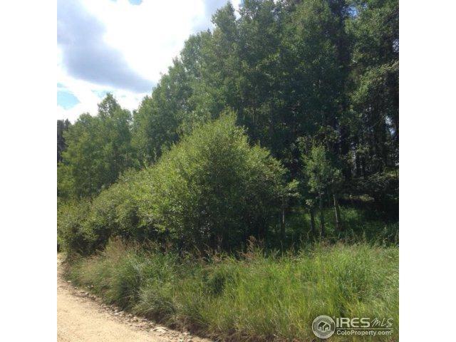 0 Mountain Meadows, Black Hawk, CO 80422 (MLS #829538) :: 8z Real Estate