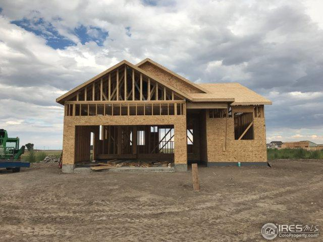 1084 Johnson St, Wiggins, CO 80654 (MLS #829572) :: 8z Real Estate