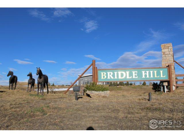3786 Bridle Ridge Cir, Severance, CO 80524 (MLS #829767) :: Kittle Real Estate