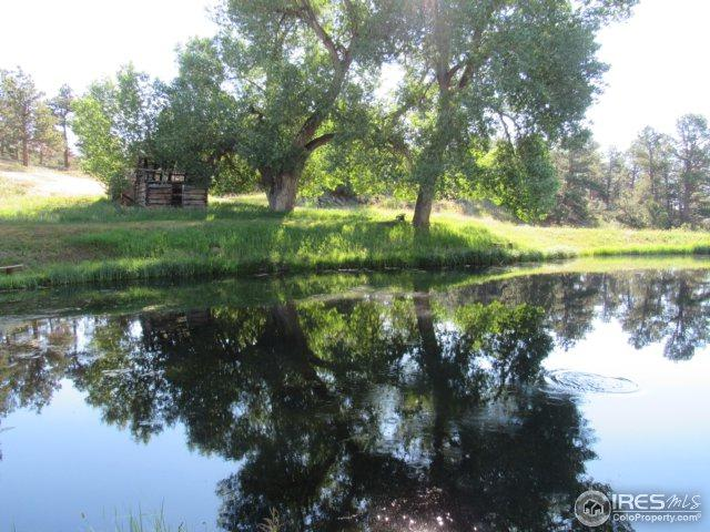 193 Sunnyvale Dr, Livermore, CO 80536 (MLS #829785) :: Kittle Real Estate
