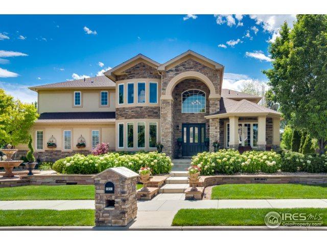 1314 Onyx Cir, Longmont, CO 80504 (MLS #829844) :: 8z Real Estate