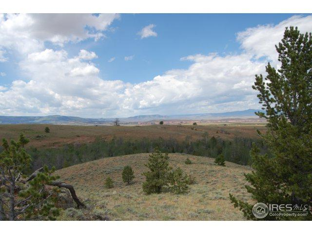 0 Running Water Ranch Rd, Red Feather Lakes, CO 80545 (MLS #829968) :: 8z Real Estate