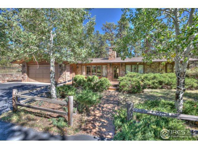2951 Fish Creek Rd, Estes Park, CO 80517 (MLS #830175) :: 8z Real Estate