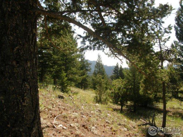 4 Lakeshore Park Rd, Boulder, CO 80302 (MLS #830478) :: 8z Real Estate