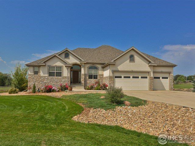 17645 Silver Fox Ct, Mead, CO 80542 (MLS #831227) :: 8z Real Estate