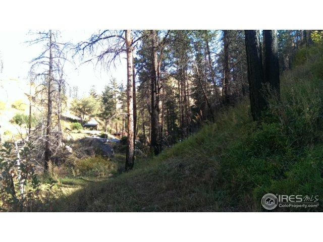 0 Fall Creek Dr, Bellvue, CO 80512 (MLS #832195) :: Downtown Real Estate Partners