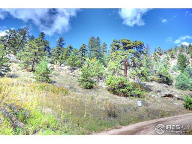 750 Pine Tree Dr, Estes Park, CO 80517 (MLS #832516) :: 8z Real Estate