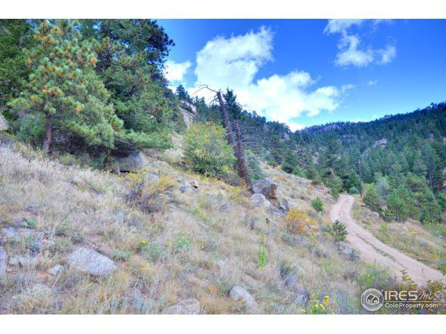 0 Pine Tree Dr, Estes Park, CO 80517 (MLS #832518) :: 8z Real Estate
