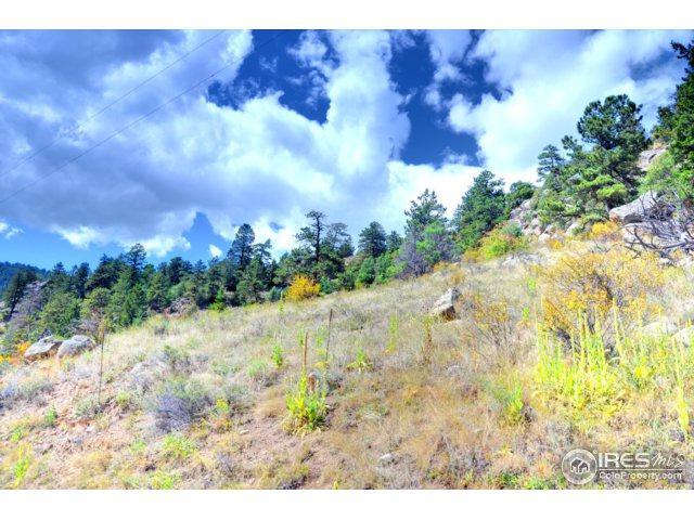 750 Pine Tree Dr, Estes Park, CO 80517 (MLS #832519) :: 8z Real Estate