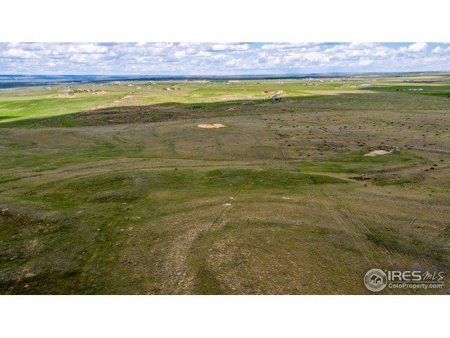 7253 County Road 100, Wellington, CO 80549 (MLS #832550) :: The Forrest Group