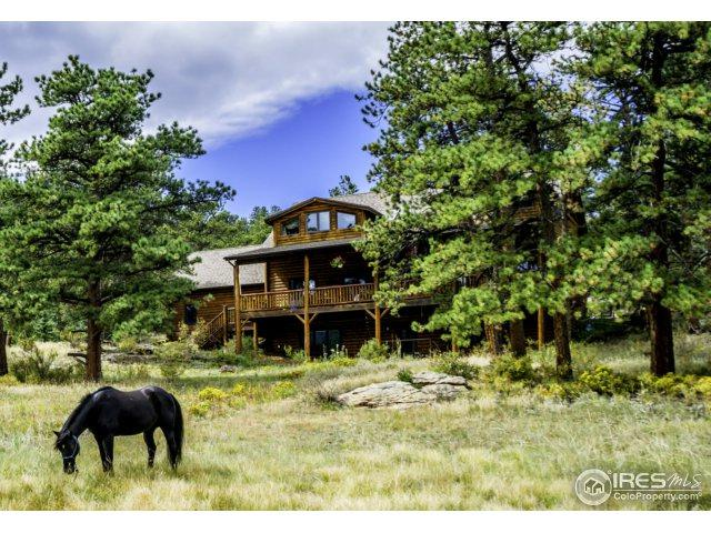 900 Rockwood Ln, Estes Park, CO 80517 (MLS #832557) :: 8z Real Estate