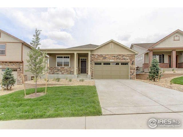 2172 Longfin Dr, Windsor, CO 80550 (MLS #832565) :: The Forrest Group