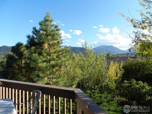 1791 Olympian Ln B, Estes Park, CO 80517 (MLS #832777) :: 8z Real Estate