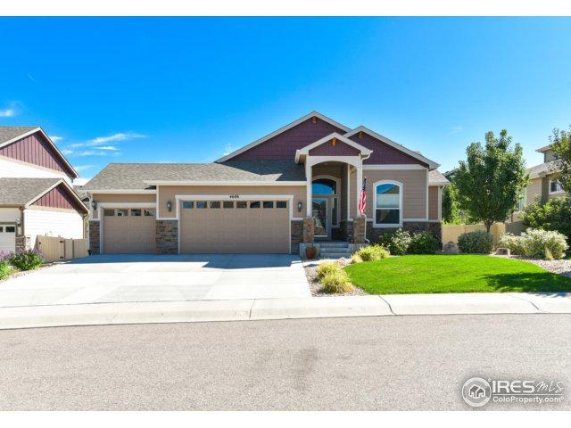 4606 Freehold Dr, Windsor, CO 80550 (MLS #832835) :: 8z Real Estate