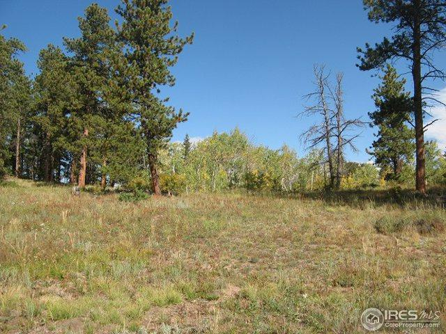 0 Yampa Ln, Red Feather Lakes, CO 80545 (MLS #832842) :: 8z Real Estate
