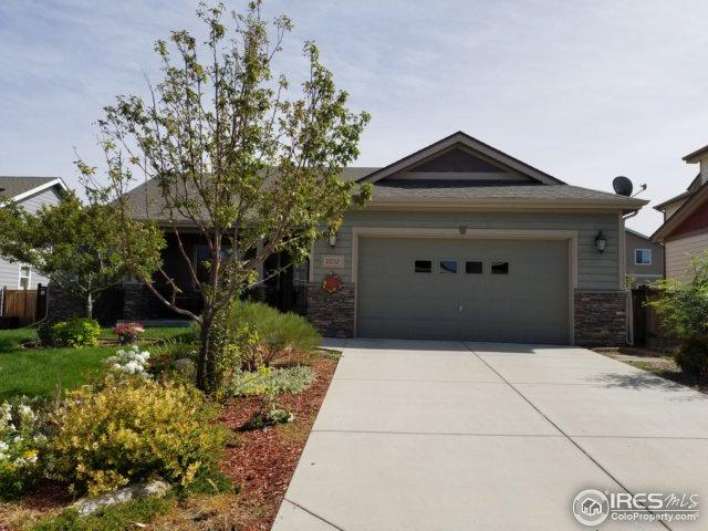 2232 73rd Ave, Greeley, CO 80634 (MLS #832882) :: 8z Real Estate
