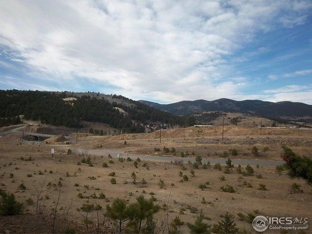 19 Bald Mountain Rd A, Central City, CO 80427 (#833741) :: The Peak Properties Group