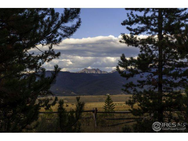 1505 Stagecoach Dr, Fraser, CO 80442 (MLS #833874) :: 8z Real Estate
