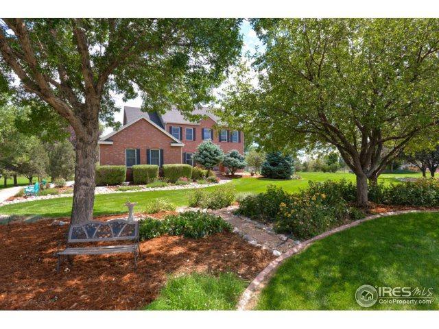 314 N Shore Cir, Windsor, CO 80550 (MLS #834139) :: 8z Real Estate