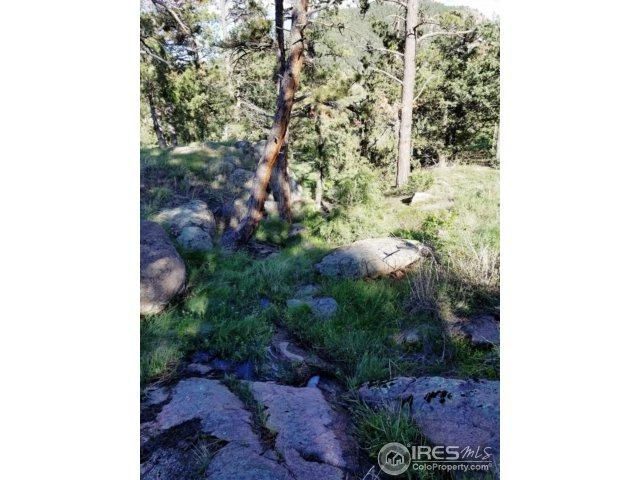 175 Choctaw Rd, Lyons, CO 80540 (MLS #834734) :: 8z Real Estate