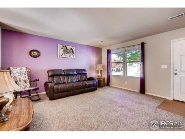 10440 Lower Ridge Rd, Longmont, CO 80504 (MLS #834808) :: The Daniels Group at Remax Alliance