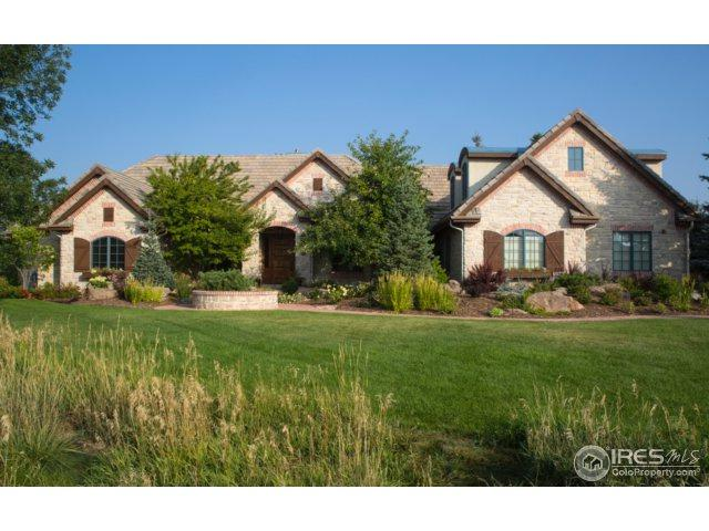 8745 Portico Ln, Longmont, CO 80503 (MLS #834832) :: The Daniels Group at Remax Alliance