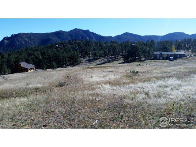 2600 Grey Fox Dr, Estes Park, CO 80517 (#834840) :: The Peak Properties Group