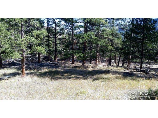 300 Green Pine Ct, Estes Park, CO 80517 (MLS #834843) :: Downtown Real Estate Partners