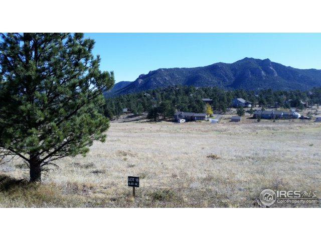 2650 Grey Fox Dr, Estes Park, CO 80517 (MLS #834855) :: 8z Real Estate