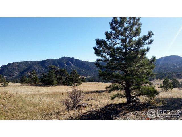 3090 Grey Fox Dr, Estes Park, CO 80517 (MLS #834859) :: 8z Real Estate