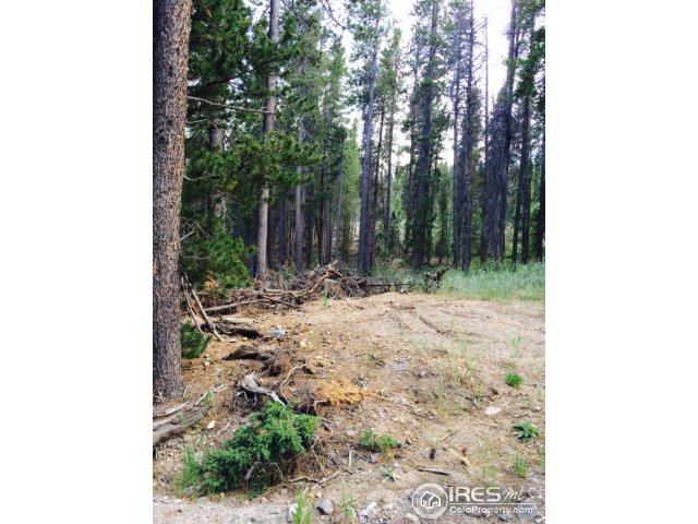 23600 Peak To Peak Hwy, Nederland, CO 80466 (MLS #835171) :: 8z Real Estate