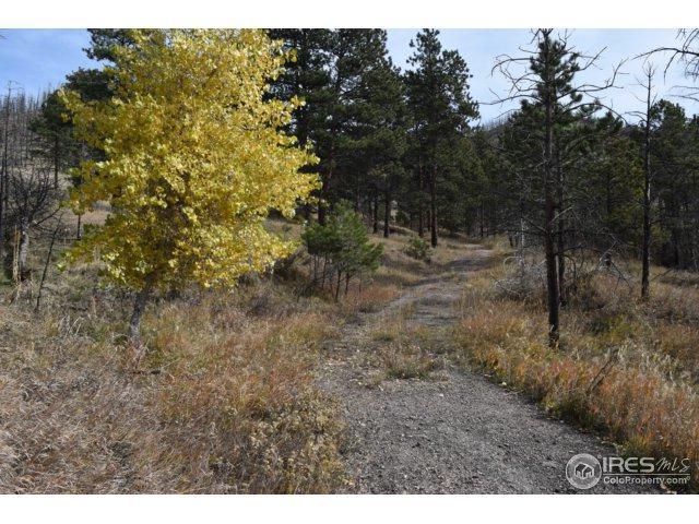 900 Stove Prairie Rd, Bellvue, CO 80512 (MLS #835338) :: Downtown Real Estate Partners
