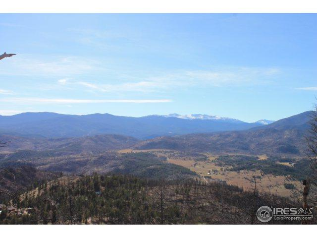 342 Ford Hill Rd, Bellvue, CO 80512 (MLS #835773) :: Downtown Real Estate Partners