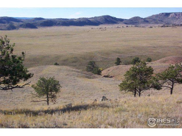 1661 Great Twins Rd, Livermore, CO 80536 (MLS #835910) :: Kittle Real Estate