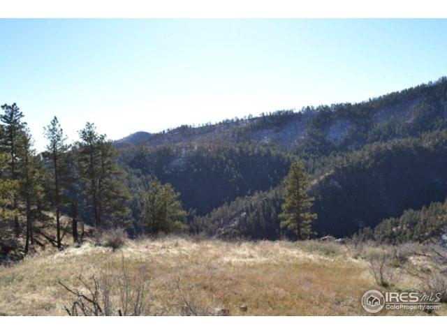 233 Horsetooth Cir, Bellvue, CO 80512 (MLS #836749) :: Downtown Real Estate Partners