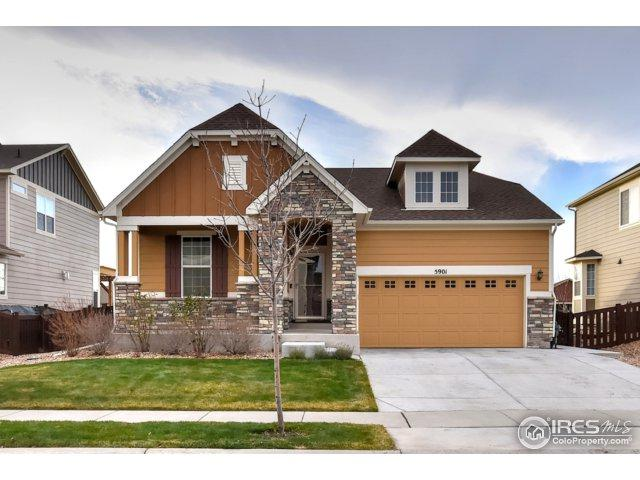 5901 Red Bridge Dr, Timnath, CO 80547 (MLS #836950) :: The Forrest Group