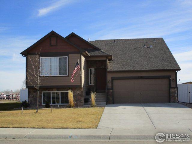 2902 Avocado Ave, Greeley, CO 80631 (MLS #837032) :: 8z Real Estate