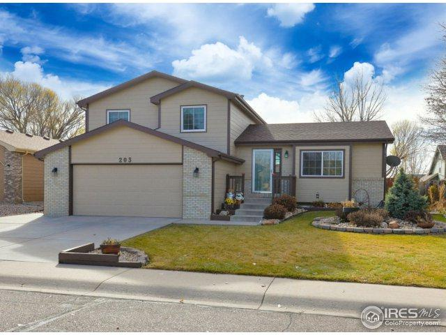 203 Valley Ct, Windsor, CO 80550 (MLS #837137) :: Downtown Real Estate Partners
