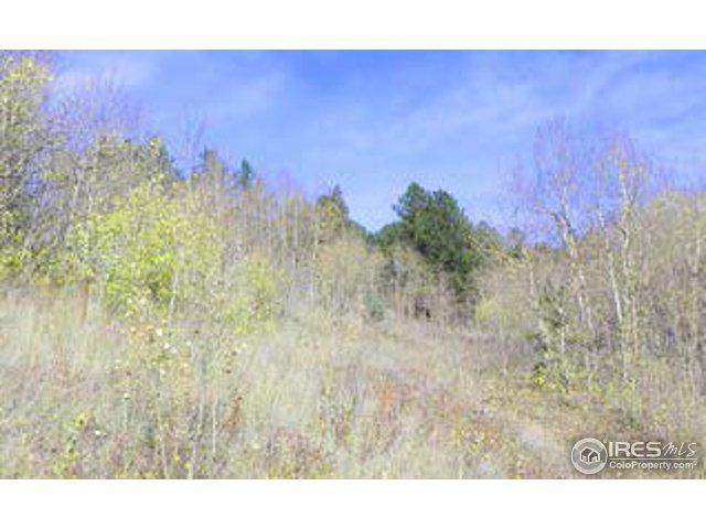 0 Highway 119, Black Hawk, CO 80422 (MLS #837227) :: 8z Real Estate
