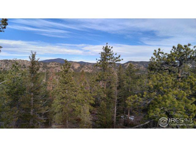 2900 Fox Acres Dr, Red Feather Lakes, CO 80545 (MLS #837486) :: Downtown Real Estate Partners